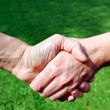 Royalty-Free Stock Photo: Handshake