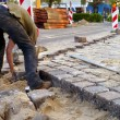 Cobblestone paver — Stock Photo