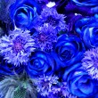 Blue flowers — Stock Photo #2431455
