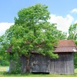 Wooden hut - Stock Photo