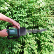Stock Photo: Mwith hedge trimmer