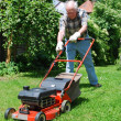 Man with lawn mower - Foto Stock