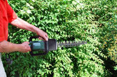 Man with hedge trimmer — Stock Photo