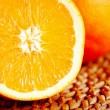 Orange — Stock Photo #1631941