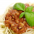 Spaghetti bolognaise — Stock Photo #1633247