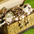 Jewelry casket — Stock Photo #1644352