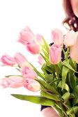 Tulipán rosa fresca y hermosa — Foto de Stock