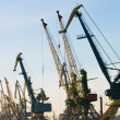 Harbour cranes — Stock Photo