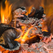 Fire and carbons - Stock Photo