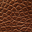 Brown crocodile leather — Stockfoto