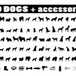 100 dogs icons and Dog accessories — Stockvectorbeeld