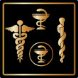 Stock Photo: Vector Gold medical card icons