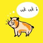 Hamster porpoise cartoon funny vector — Stock Photo