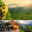 Stock Photo: Grapes, vineyard, bottle collage.