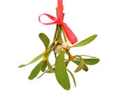 Mistletoe over white — Stock Photo