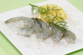 Uncooked shrimps — Stock Photo
