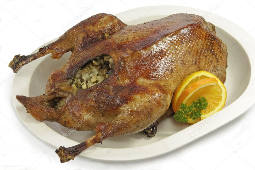 Crunchy fried goose with orange on a plate — Stock Photo #1627649