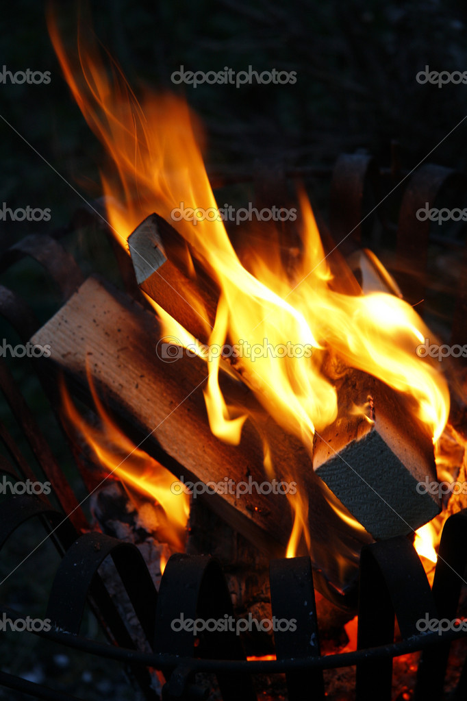 Burning bonfire in the dark — Stock Photo #1630186