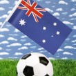 Royalty-Free Stock Photo: Australian Soccer