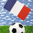 French soccer — Stock Photo