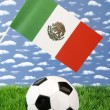 Mexican soccer — Stock Photo