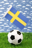 Swedish soccer — Stock Photo