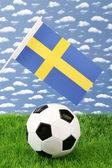 Swedish soccer — Stock Photo