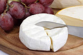 French brie — Stock fotografie