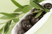 Black olives with branch — Stock Photo
