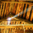 Stock Photo: Old attic