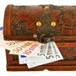 Trunk  euro — Stock Photo