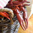 Crayfish on the table — Stock Photo #1808892