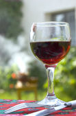 Waiting for barbecue with wine glass — Stock Photo