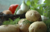 Jacket potatoes with fresh dill — Stock Photo