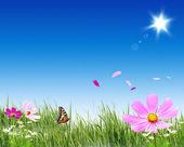 Zelená tráva a květiny — Stock fotografie