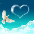 Dove and a heart - Stock Photo