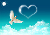 Dove and a heart — Stock Photo