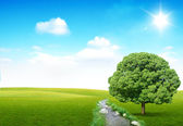 реки и дерево — Стоковое фото