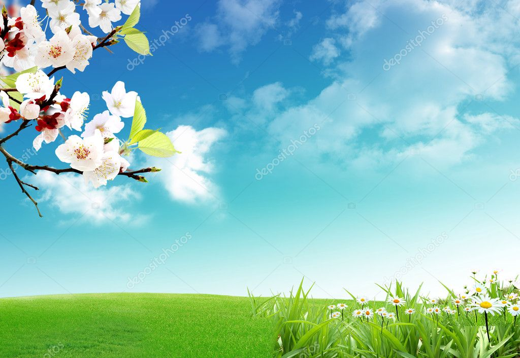 Spring when the nature wakes up from the winter a long sleep — Stock Photo #1693417