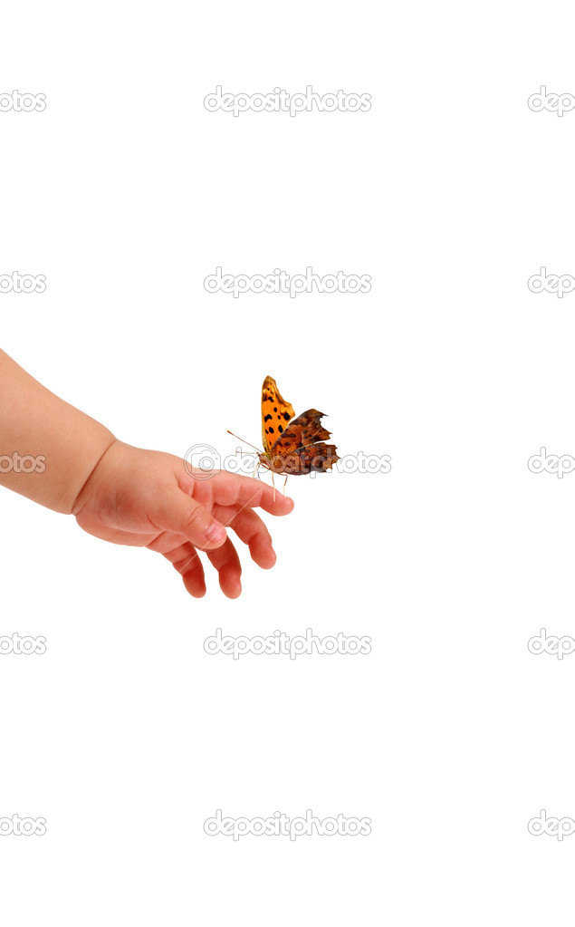 Beautiful butterfly standing on the baby's hand — Stock Photo #1706915