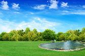 湖で — ストック写真