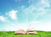 Libro bajo cielo — Foto de Stock