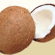 Coconut — Stock Photo #1730860