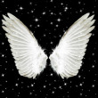 Foto Stock: Angel Wings