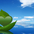 Green Heart And Leaf — Stock Photo
