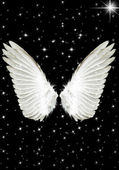 Engel vleugels — Stockfoto