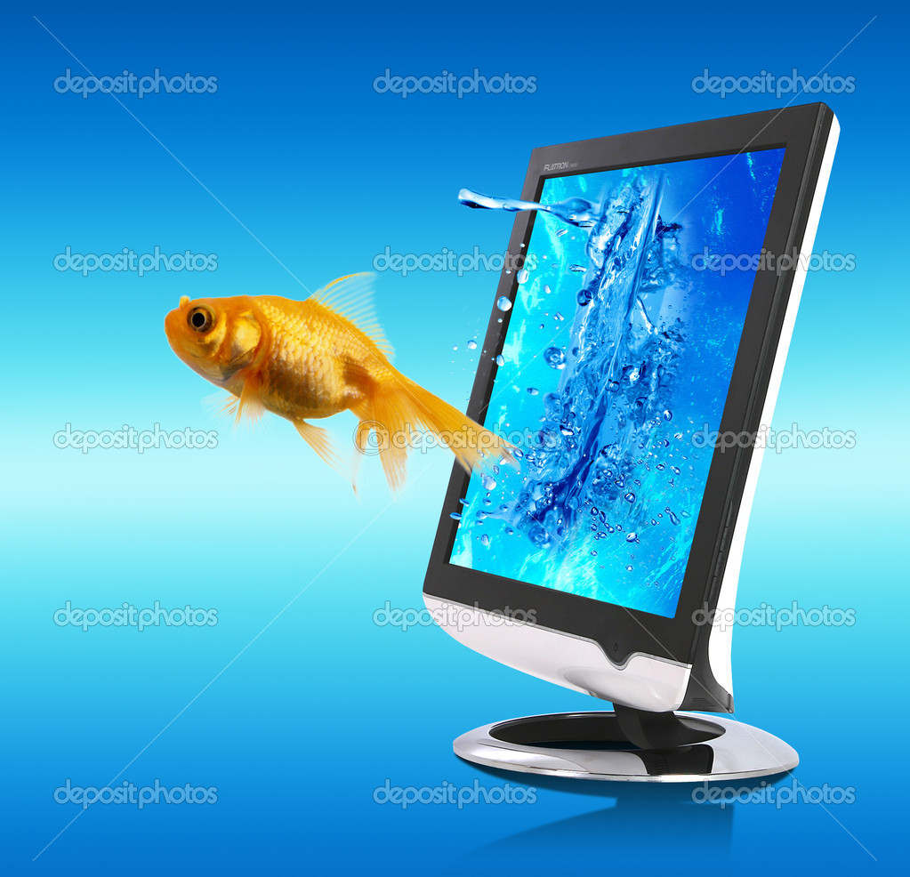 Nice picture with small golden fish which is coming out from the screen — Stock Photo #1731369