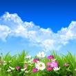 Spring day — Stock Photo #1758961