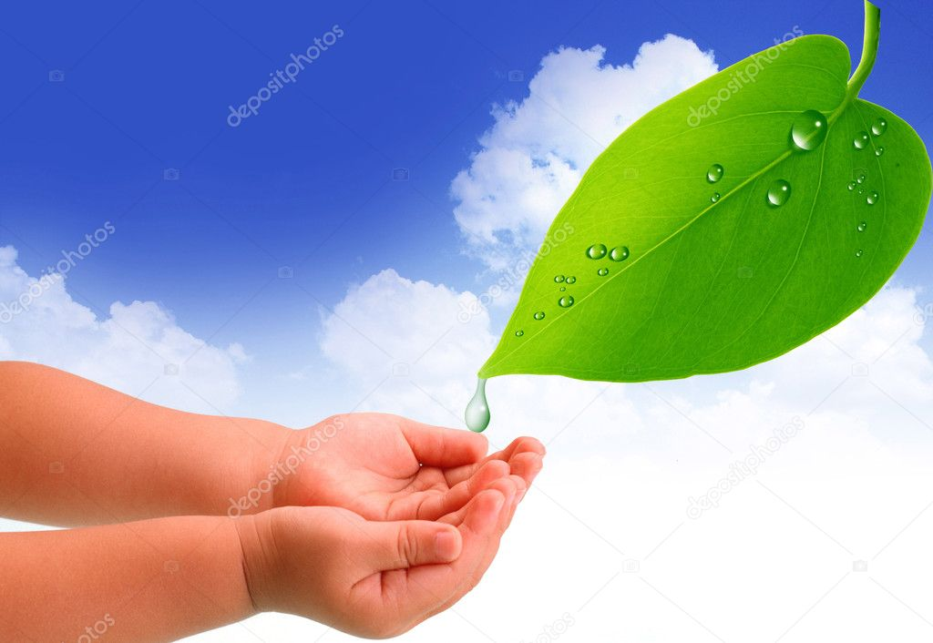 Green leave and a baby's hands — Stock Photo #1759055