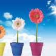 Stock Photo: Three flowers